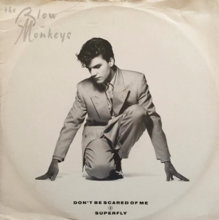 "Blow Monkeys (The) - Don't Be Scared Of Me (12"") (G/G-)"